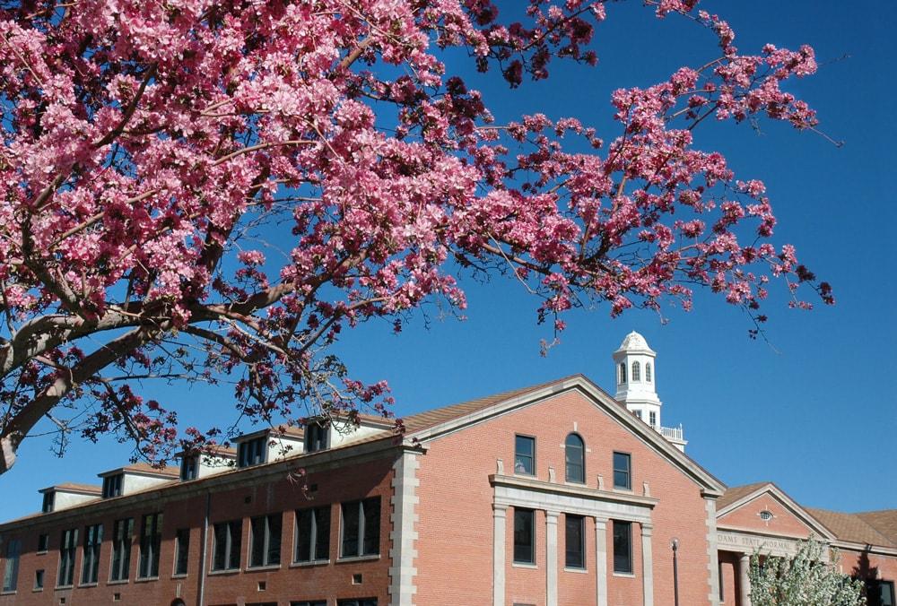 Richardson Hall spring