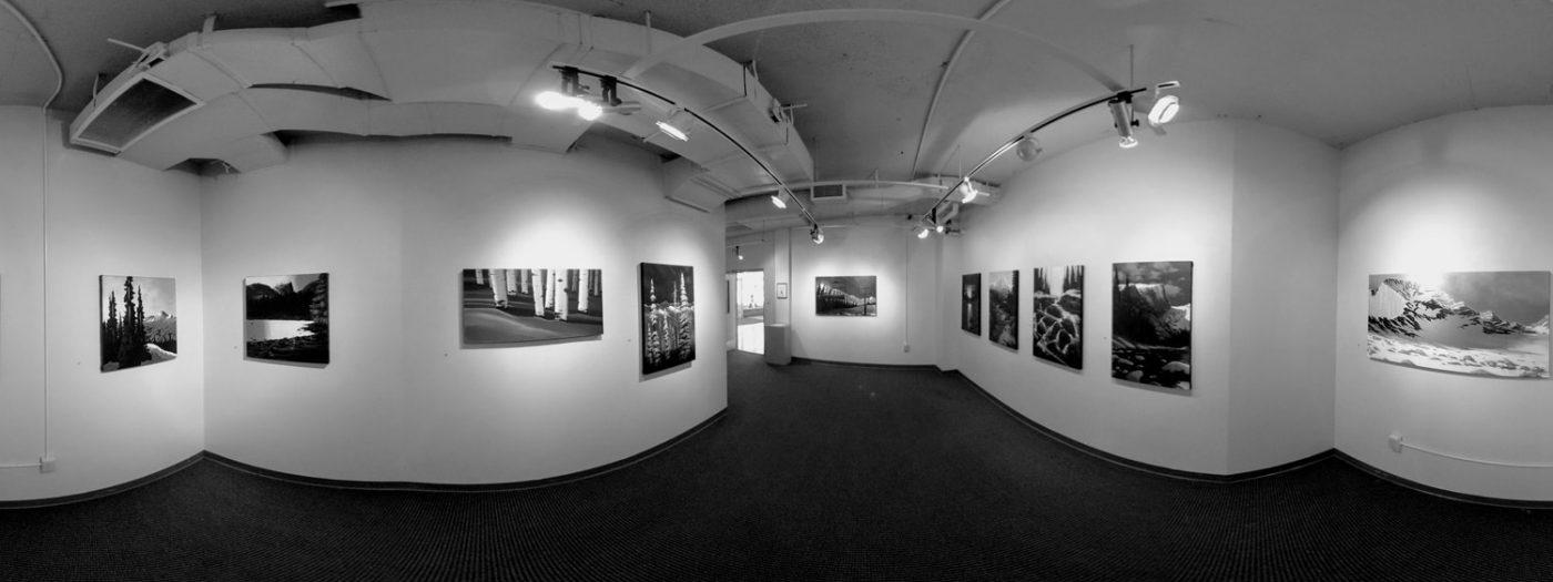 Hatfield art gallery