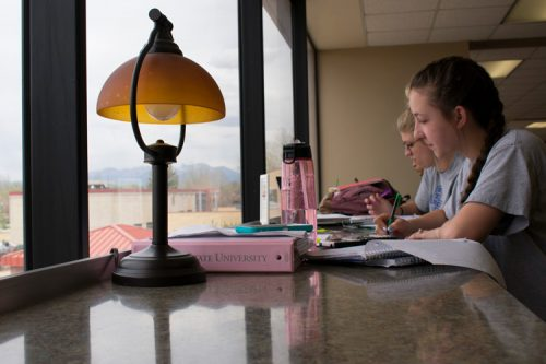 students studying in Nielsen Library