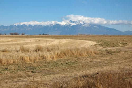 farm field in front of Mt. Blanca