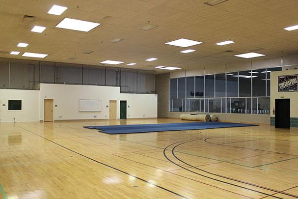 Plachy auxiliary gym