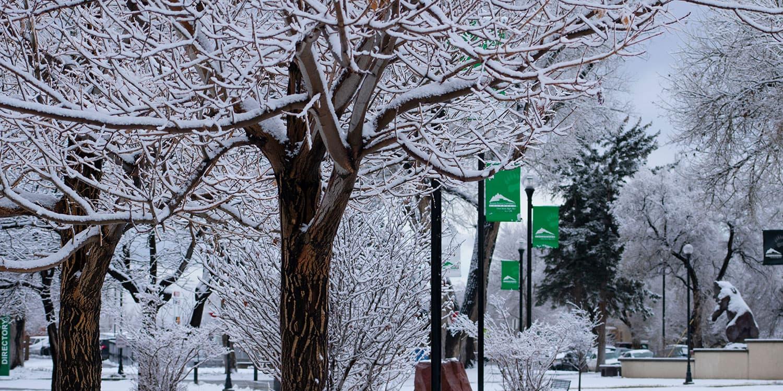Snowy Adams State campus