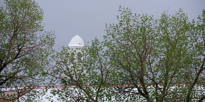 Richardson Hall cupola and trees