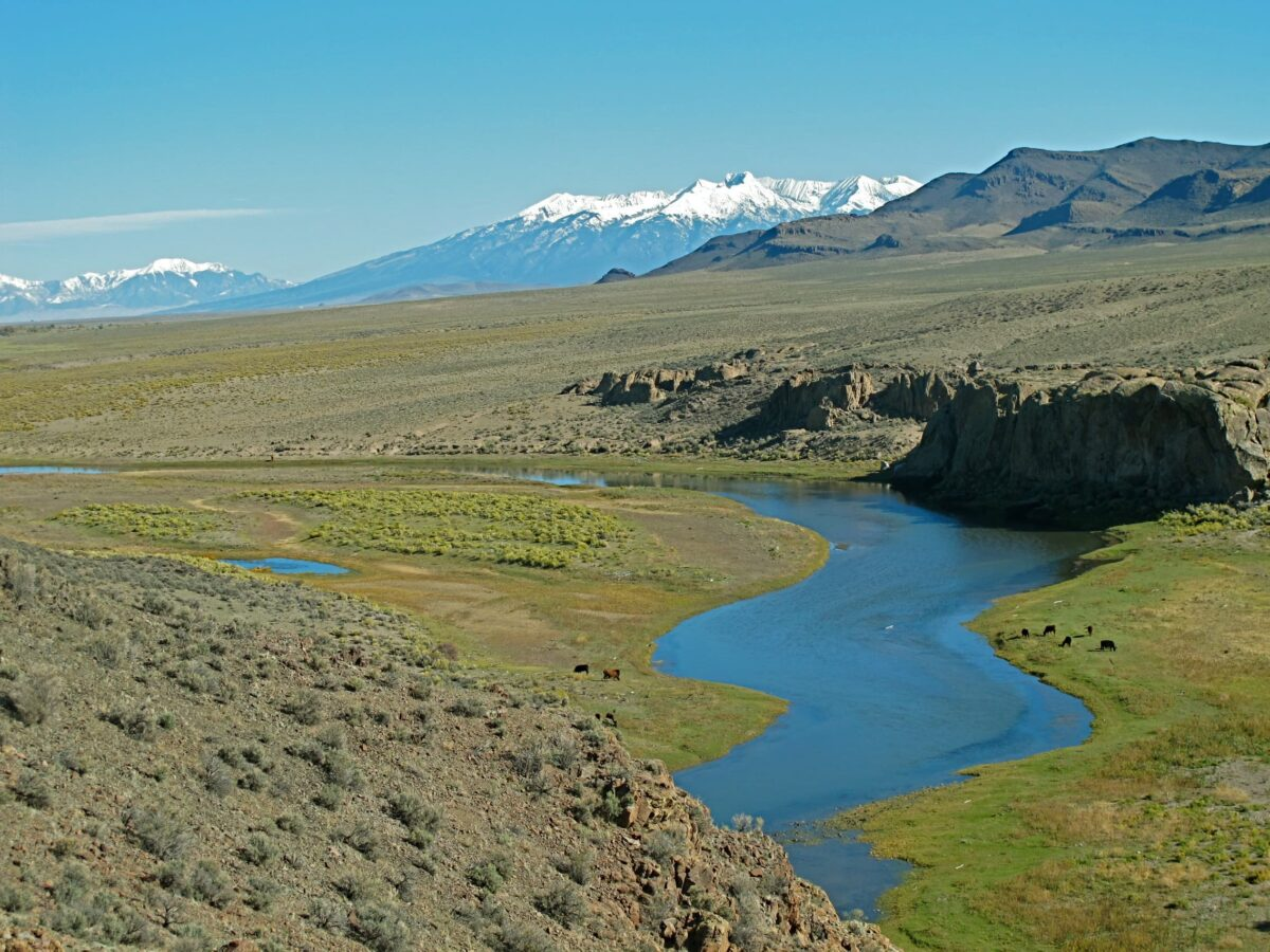 salazar ranch